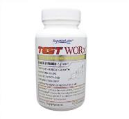 testworx.png